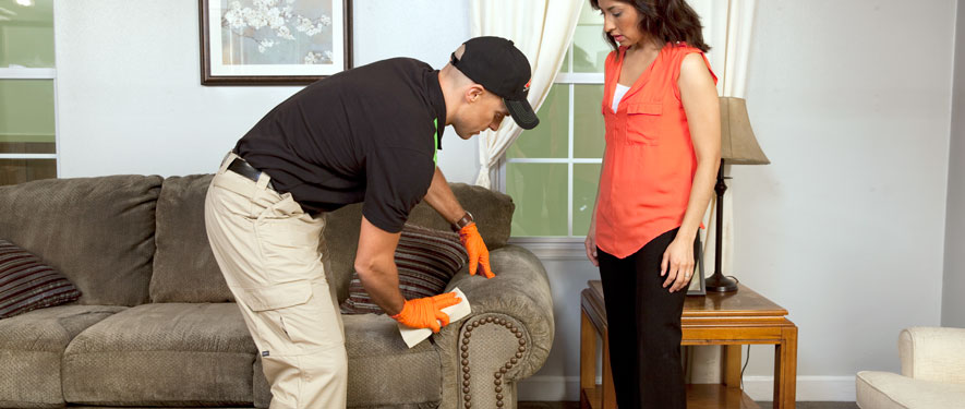 Nanuet, NY carpet upholstery cleaning
